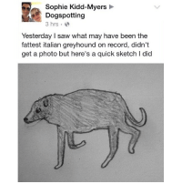 It's not fat shaming if it's an adorable sketch.: Sophie Kidd-Myers  Dogspotting  3 hrs  Yesterday I saw what may have been the  fattest italian greyhound on record, didn't  get a photo but here's a quick sketch I did It's not fat shaming if it's an adorable sketch.