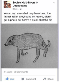 Saw, Record, and Kidd: Sophie Kidd-Myers  Dogspotting  3 hrs.  Yesterday I saw what may have been the  fattest italian greyhound on record, didn't  get a photo but here's a quick sketch I did  2K Likes 89 Comments  Like Comment  Share