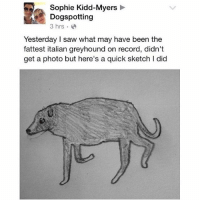 yesterday I took the SAT and I was dissociating so hard after that - Max textpost textposts: Sophie Kidd-Myers  Dogspotting  3 hrs.  Yesterday saw what may have been the  fattest italian greyhound on record, didn't  get a photo but here's a quick sketch I did yesterday I took the SAT and I was dissociating so hard after that - Max textpost textposts