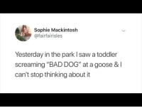 """Bad, Saw, and MeIRL: Sophie Mackintosh  @fairfairisles  Yesterday in the park I saw a toddler  screaming """"BAD DOG"""" at a goose &I  can't stop thinking about it meirl"""