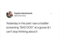 """Bad, Saw, and Dog: Sophie Mackintoslh  @fairfairisles  Yesterday in the park I saw a toddler  screaming """"BAD DOG"""" at a goose & I  can't stop thinking about it Bad Dog 🦆"""