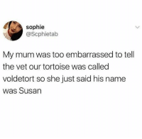Memes, 🤖, and Tortoise: sophie  @Scphietab  My mum was too embarrassed to tell  the vet our tortoise was called  voldetort so she just said his name  was Susan @pubity is an absolute must follow if you like memes 😂