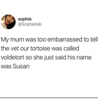 Memes, Twitter, and 🤖: sophie  @Scphietab  My mum was too embarrassed to tell  the vet our tortoise was called  voldetort so she just said his name  was Susan VOLDETORT!!!!!!!! 😂😂😂 (@scphietab on Twitter)