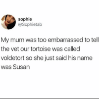 Cute, Girl Memes, and Tortoise: sophie  @Scphietab  My mum was too embarrassed to tell  the vet our tortoise was called  voldetort so she just said his name  was Susan Just as cute