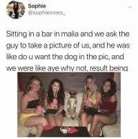 Fam, Memes, and Hell: Sophie  @sophieinnes_  Sitting in a bar in malia and we ask the  guy to take a picture of us, and he was  like do u want the dog in the pic, and  we were like ave why not, result being Why the hell arent u following @kalesaladanimals yet fam
