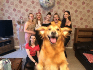 My girlfriend and her friends tried to take a group photo, Alfie wanted to be in it as well: SOPHIE  WILLS  ae My girlfriend and her friends tried to take a group photo, Alfie wanted to be in it as well