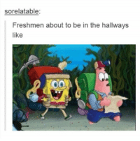 """""""I hate freshmen"""" -every 10th grader who's been a sophomore for 15 minutes: sorelatable:  Freshmen about to be in the hallways  like """"I hate freshmen"""" -every 10th grader who's been a sophomore for 15 minutes"""