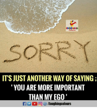 Indianpeoplefacebook, Another, and Ego: SORRI  ITS JUST ANOTHER WAY OF SAYING  YOU ARE MORE IMPORTANT  THAN MY EGO  llaughingcolours