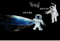 Memes, Sorry, and Wtf: Sorry bOl  wtf is flat