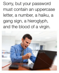 Sorry, Virgin, and Gang: Sorry, but your password  must contain an uppercase  letter, a number, a haiku, a  gang sign, a hieroglyph,  and the blood of a virgin. me irl