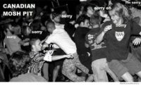 sorry  CANADIAN  sorry eh  MOSH PIT  sorry  sorry  sorry  Sorry  0  no i  SO  We KnowMeme Lol - Kittykat