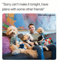 "Friends, Sorry, and Tbh: ""Sorry can't make it tonight, have  plans with some other friends'""  @BrosBeingBasic The only way to spend NationalPuppyDay tbh 💁🏼🐶 @hotdudeswithdogs @trevor_dutch"