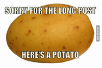 SORRY FOR THE LONG POST  HERES A POTATO