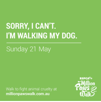 Memes, Sorry, and Animal: SORRY, I CAN'T  I'M WALKING MY DOG  Sunday 21 May  RSPCA  illion  aus  Walk to fight animal cruelty at  millionpawswalk.com.au  2017 SHARE if you are walking to fight animal cruelty this Sunday!   Haven't signed up yet? Grab your tickets today to secure your spot! https://goo.gl/B0ssNc