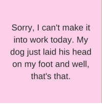 Good Morning!  Have a fab day all!: Sorry, I can't make it  into work today. My  dog just laid his head  on my foot and well,  that's that Good Morning!  Have a fab day all!