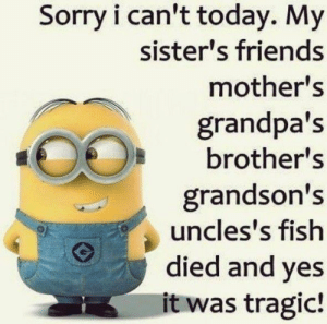Friends, Sorry, and The Worst: Sorry i can't today. My  sister's friends  mother's  grandpa's  brother's  grandson's  uncles's fish  died and yes  it was tragic! The worst one yet