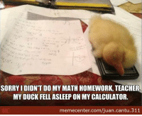 Perfectly justifiable excuse.: SORRY I DIDNT DO MY MATH HOMEWORK, TEACHER  MYDUCK FELL ASLEEP ON MY CALCULATOR.  memecenter.com/juan.cantu. 311 Perfectly justifiable excuse.