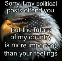 Offended You: Sorry if my political  posts offend you  but the future  of my country  is more important  than your feelings