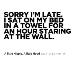 Meirl: SORRY I'M LATE.  ISAT ON MY BED  IN A TOWEL FOR  AN HOUR STARING  AT THE WALL.  A little Hippie, A little Hood July 11 at 6:07 AM Meirl