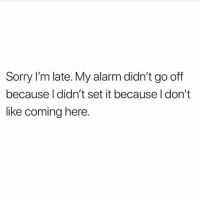 Dank, Sorry, and Alarm: Sorry I'm late. My alarm didn't go off  because I didn't set it because I don't  like coming here. 🤷♂️