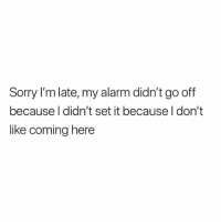 Memes, Sorry, and Alarm: Sorry I'm late, my alarm didn't go off  because l didn't set it because I don't  like coming here Don't follow @drgrayfang if you're easily offended