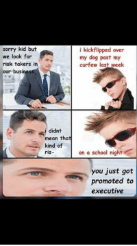 Memes, School, and Sorry: sorry kid but  i kickflipped over  we look for  my dog past my  risk takers in  a curfew last week  our busines  i didnt  mean that  kind of  ris-  on a school night  you just got  promoted to  executive Sven?