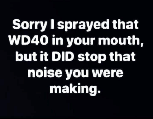 Memes, Sorry, and 🤖: Sorry l sprayed that  WD40 in your mouth,  but it DID stop that  noise you were  making. Robert B