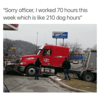"Funny, Got, and Dog: ""Sorry officer, I worked 70 hours this  week which is like 210 dog hours""  iver  side It's 490 dog hours but give him a break he just got into an accident"