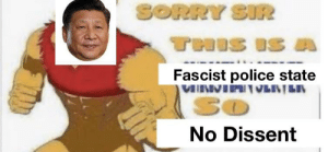 Oh fuck guys xi is here to harvest my organs: SORRY SIR  THIS IS A  Fascist police state  VNVIAVENȚEN  So  No Dissent Oh fuck guys xi is here to harvest my organs