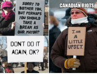 9gag, Dank, and Disappointed: SORRY TO  BOTHER You,  BUT PERHAPS  YOU SHOULD  TAKE A  BREAK AS  OUR MAYOR?  CANADIAN RIOTS  I AM  LITTLE  UPSET  DONT DO IT  AGAIN, OK? I'm not mad, I'm just disappointed https://9gag.com/gag/av0vE0n?ref=fbpic