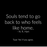 Memes, Home, and Back: Souls tend to go  back to who feels  like home  N. R. Hart  Type Yes' if you agree. 👉🏼 via @thepoweroftantra 👈🏼