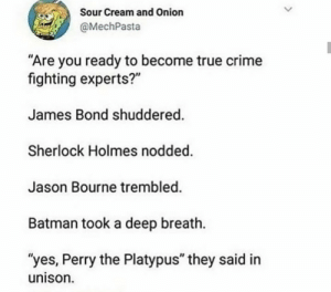 ".: Sour Cream and Onion  @MechPasta  ""Are you ready to become true crime  fighting experts?""  James Bond shuddered.  Sherlock Holmes nodded.  Jason Bourne trembled.  Batman took a deep breath.  ""yes, Perry the Platypus"" they said in  unison ."