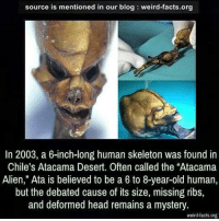"Facts, Head, and Memes: source is mentioned in our blog weird-facts.org  In 2003, a 6-inch-long human skeleton was found in  Chile's Atacama Desert. Often called the ""Atacama  Alien,"" Ata is believed to be a 6 to 8-year-old human,  but the debated cause of its size, missing ribs,  and deformed head remains a mystery.  weird-facts.org y'all never listen to me anymore then be the main ones complaining i never post scary stuff and blah blah when i always simply ask y'all to send me some or to help me out but noooo it's fine... dm are close for a while"