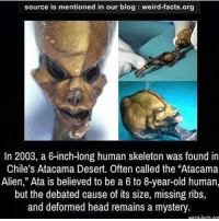 "Facts, Head, and Memes: source is mentioned in our blog weird-facts.org  In 2003, a 6-inch-long human skeleton was found in  Chile's Atacama Desert. Often called the ""Atacama  Alien,"" Ata is believed to be a 6 to 8-year-old human,  but the debated cause of its size, missing ribs,  and deformed head remains a mystery  weird-tacts or Good morning :)"