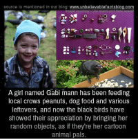 Peanuts: source Is mentioned in our blog  www.unbelievablefactsblog.com  A girl named Gabi mann has been feeding  local crows peanuts, dog food and various  leftovers, and now the black birds have  Showed their appreciation by bringing her  random objects, as if they're her cartoon  animal pals.