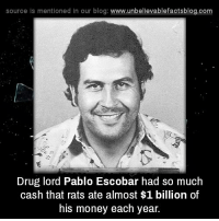 Drugs, Memes, and Money: source is mentioned in our blog  www.unbelievablefactsblog.com  Drug lord Pablo Escobar had so much  cash that rats ate almost $1 billion of  his money each year.