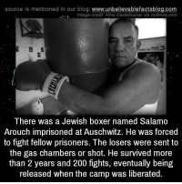 Memes, Prison, and Auschwitz: source Is mentioned In our blog  www.unbelievablefactsblog.com  I Image credit: Rina. Castelnuovo via nytimes.com  There was a Jewish boxer named Salamo  Arouch imprisoned at Auschwitz. He was forced  to fight fellow prisoners. The losers were sent to  the gas chambers or shot. He survived more  than 2 years and 200 fights, eventually being  released when the camp was liberated.