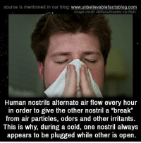 """Memes, Blog, and Break: source Is mentioned In our blog  www.unbelievablefactsblog.com  Image credit William Brawley via flickr  Human nostrils alternate air flow every hour  in order to give the other nostril a """"break""""  from air particles, odors and other irritants  This is why, during a cold, one nostril always  appears to be plugged while other is open."""