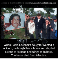Drugs, Facts, and Head: source Is mentioned In our blog  www.unbelievablefactsblog.com  When Pablo Escobar's daughter wanted a  unicorn, he bought her a horse and stapled  a cone to its head and wings to its back.  The horse died from infection 15 More Facts About The Notorious Drug Lord Pablo Escobar: http://bit.ly/2eRzVmD
