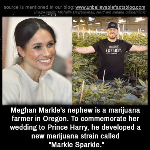 "Royals 😅: source is mentioned in our blog: www.unbelilevablefactsblog.co  Image credit; Michelle Day/Dilymail, Northern Ireland Office/Flick  CANNABI  Meghan Markle's nephew is a marijuana  farmer in Oregon. To commemorate her  wedding to Prince Harry, he developed a  new marijuana strain called  ""Markle Sparkle."" Royals 😅"
