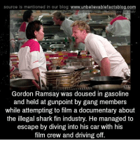 Driving, Gordon Ramsay, and Memes: source Is mentioned in our blog: www.unbellevablefactsblog.co  usaysubuussions  Gordon Ramsay was doused in gasoline  and held at gunpoint by gang members  while attempting to film a documentary about  the illegal shark fin industry. He managed to  escape by diving into his car with his  film crew and driving off.
