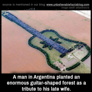 Beautiful, Memes, and Argentina: source is mentioned in our blog: www.unbellevablefactsblog.com  Image credit: atlasobscura  A man in Argentina planted an  enormous guitar-shaped forest as a  tribute to his late wife. That is so beautiful.🙂