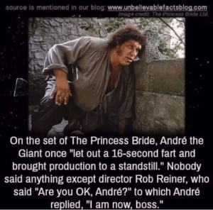 "André the Giant, Blog, and Giant: source Is mentioned in our blog: www.unbellevablefactsblog.com  Image credit: The Princess Bride Ltd  On the set of The Princess Bride, André the  Giant once ""let out a 16-second fart and  brought production to a standstill."" Nobody  said anything except director Rob Reiner, Who  said ""Are you OK, André?"" to which André  replied, "" am now, boss,"" Only Andre"