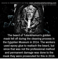 Beard, Memes, and The Mask: source Is mentioned In our blog: www.unbellevablefactsblog.com  mage credit: Slaunger via wikimedia  The beard of Tutankhamun's golden  mask fell off during the cleaning process in  the Egyptian Museum in 2014. The workers  used epoxy glue to reattach the beard, but  since that was not the professional method  and permanent damage was done to the  mask they were prosecuted for this in 2016.