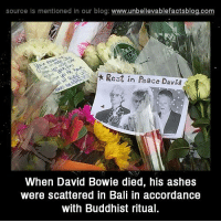 David Bowie, Memes, and Bali: source is mentioned in our blog: www.unbellevablefactsblog.com  Rest in Peace Davi  When David Bowie died, his ashes  were scattered in Bali in accordance  with Buddhist ritua