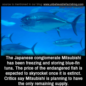 Critics: source is mentioned in our blog: www.unbellevablefactsblog.com  The Japanese conglomerate Mitsubishi  has been freezing and storing blue-fin  tuna. The price of the endangered fish is  expected to skyrocket once it is extinct.  Critics say Mitsubishi is planning to have  the only remaining supply.