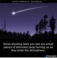 shooting stars: source is mentioned on weird-facts.org  Some shooting stars you see are actual  pieces of astronaut poop burning up as  they enter the atmosphere.  blowing fact