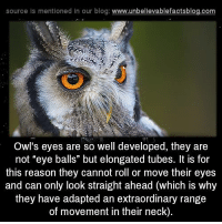 "source ls mentioned in our blog  www.unbelievablefactsblog.com  Owl's eyes are so well developed, they are  not ""eye balls"" but elongated tubes. It is for  this reason they cannot roll or move their eyes  and can only look straight ahead (which is why  they have adapted an extraordinary range  of movement in their neck)."