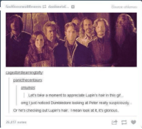 Dumbledore, Gif, and Memes: Source: ohlumos  faultinourwallflowers danisnotaf..  cagedbirdlearningtofly  panicthecentaurs:  ohlumos  Let's take a moment to appreciate Lupin's hair in this gif...  omg I just noticed Dumbledore looking at Peter really suspiciously.  or he's checking out Lupin's hair. Imean look at it, it's glorious.  26,417 notes ~Dobby