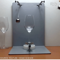Regular glass vs. Tritan Crystal Glass. What do you think is stronger?: SOURCE: YOUTUBE HOME SCIENCE Regular glass vs. Tritan Crystal Glass. What do you think is stronger?